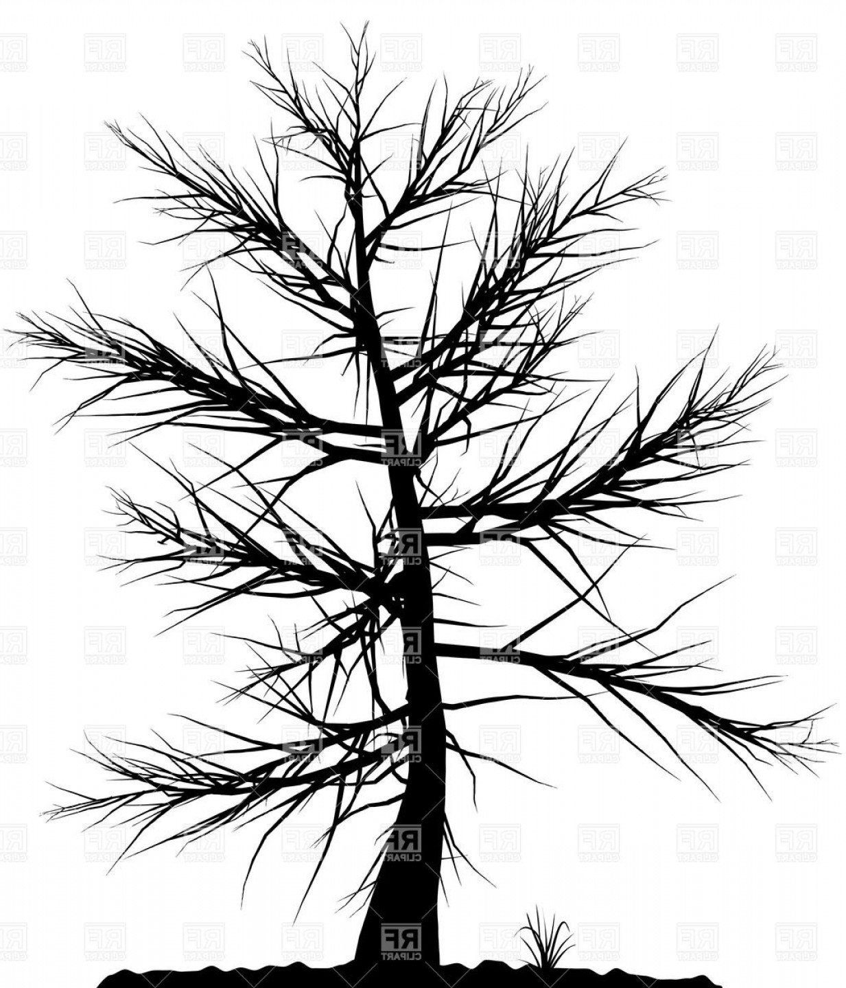 Tree Silhouette Vector Clip Art: Black Tree Silhouette On White Background Vector Clipart