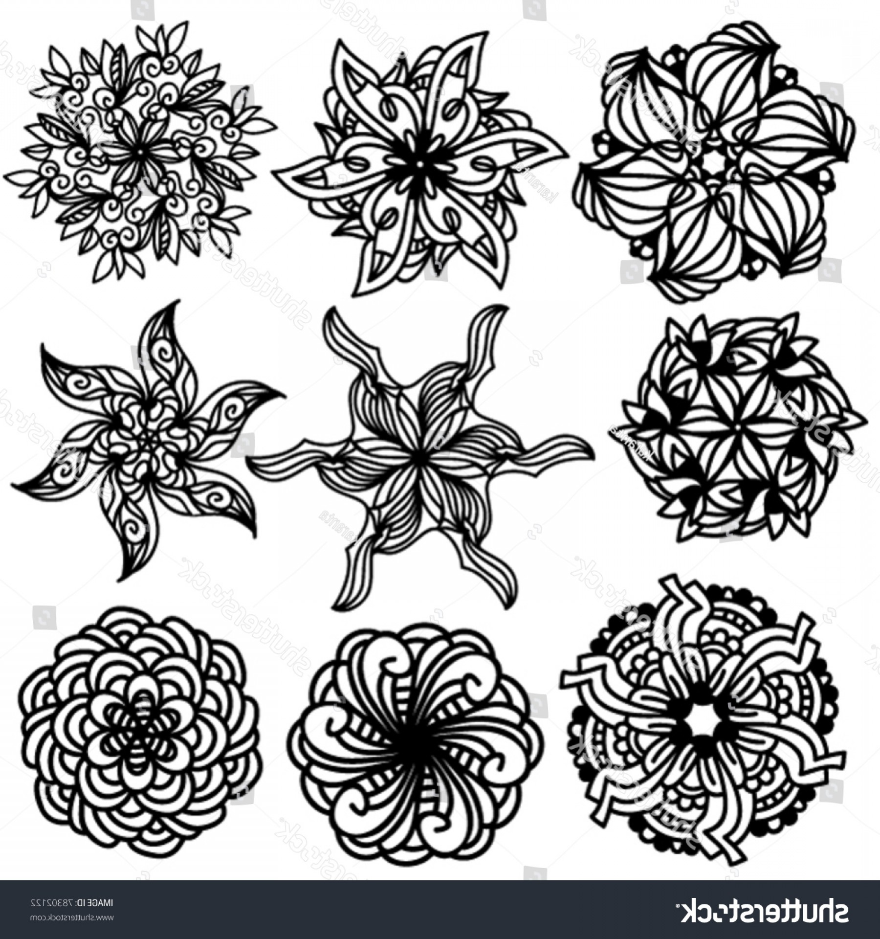 Vector Ornament Sets: Black Vector Ornament Collection Over White