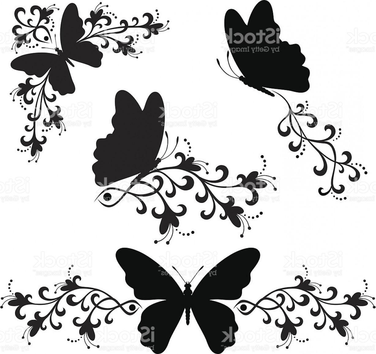 Butter Fly And Flower Vector Black And White: Black White Butterfly Silhouette Gm