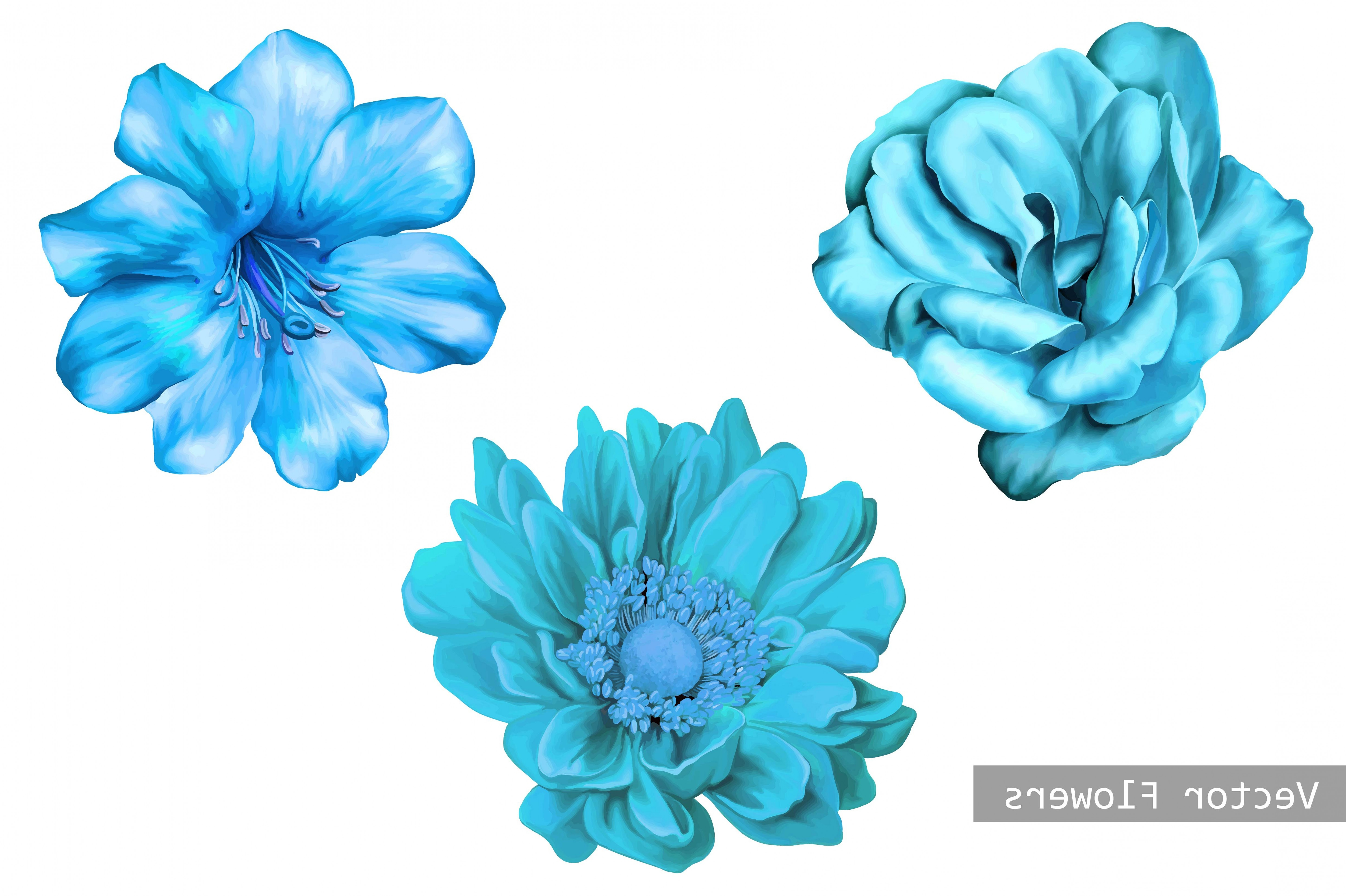 Turquoise Flower Vector: Blue Flowers Camellia Rose Dahlia