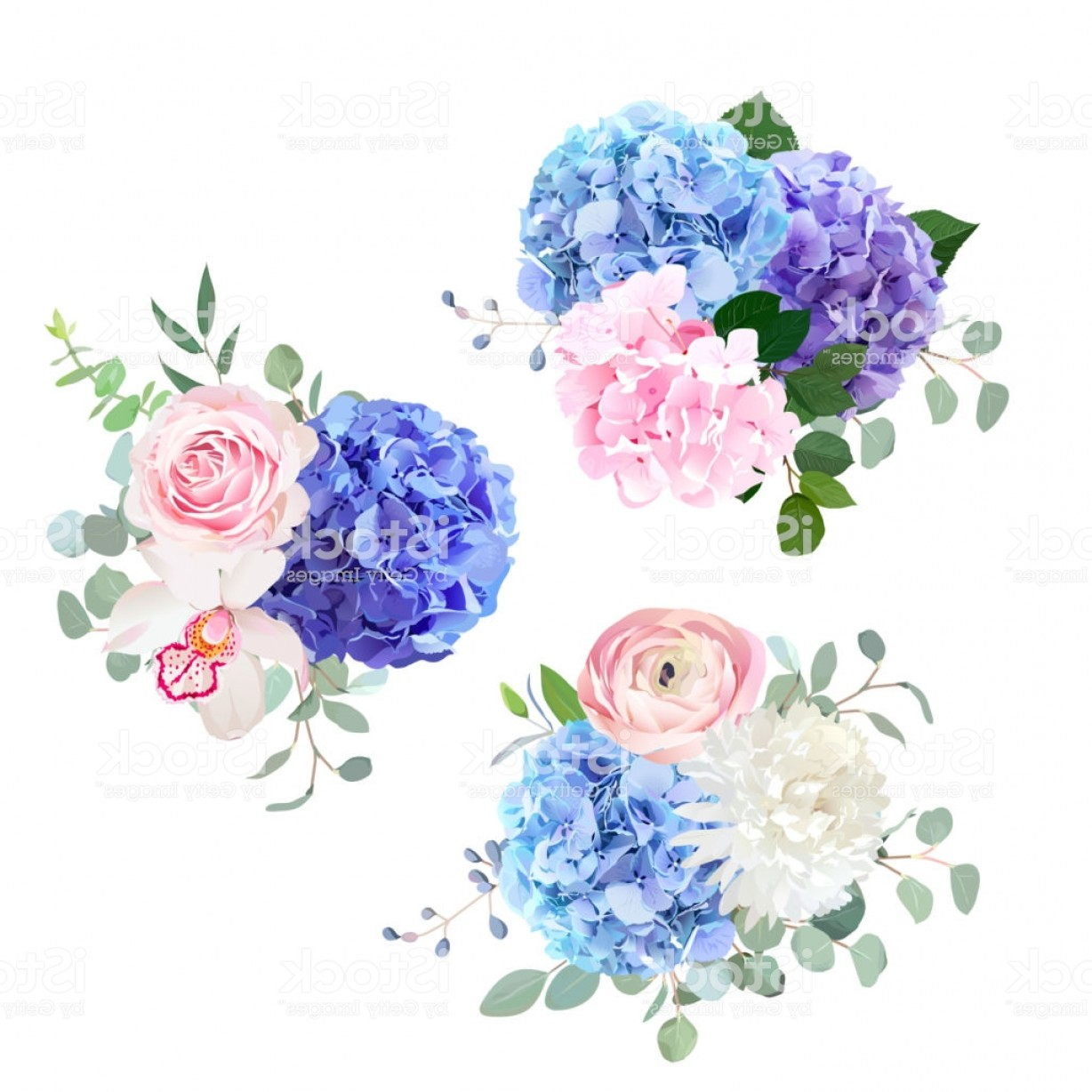 Vector Image Blue Hydrangeas: Blue Pink And Purple Hydrangea Orchid Rose White Chrysanthem Gm