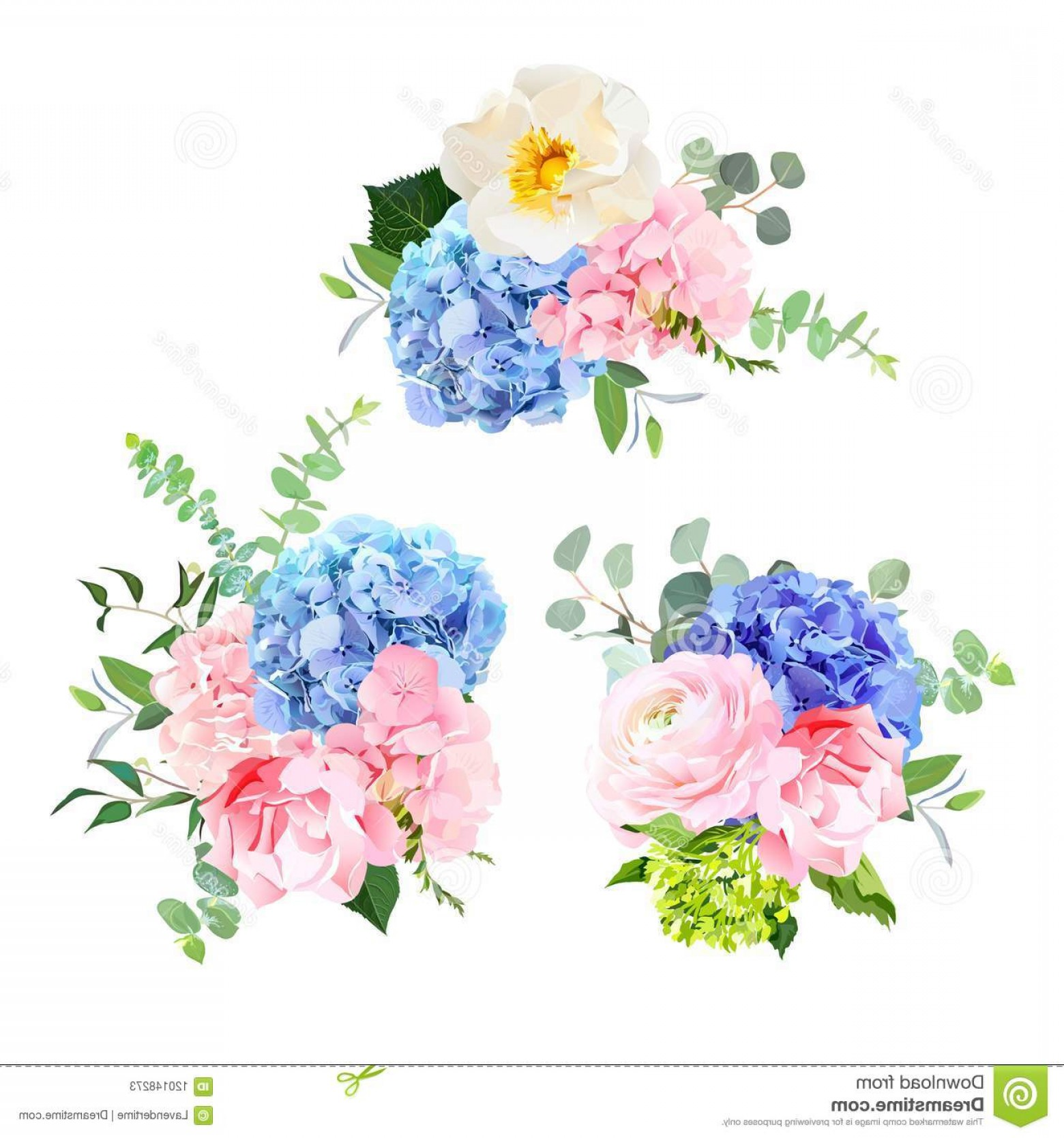Vector Image Blue Hydrangeas: Blue Pink Green Purple Hydrangea Blue Pink Green Purple Hydrangea Wild Rose Orchid Carnation Baby Blue Eucalyptus Image