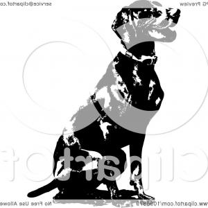 Pointer Dog Vector: Black And White Sitting German Short Haired Pointer Dog