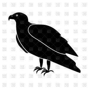 Falcon Silhouette Vector: Black Eagle Falcon On White Background Vector Clipart