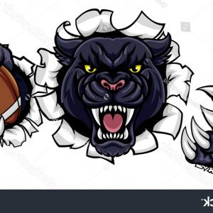 Panther Mascot Vector Sports: Panther Sport T Shirt Graphics Vintage Apparel Typography Artwork Stamp Print Design Wild Big Cat Head
