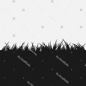 Grassy Black Vector: Black Silhouette Meadow Grass Vector Landscape