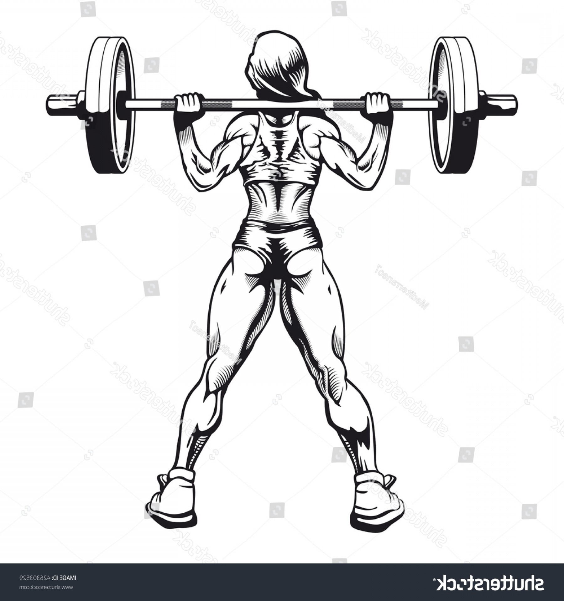 Vector Barbell Press: Bodybuilder Woman Squatting Vector Image