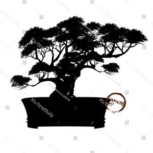 Bonsai Vector: Bonsai Tree Black Silhouette Detailed Image