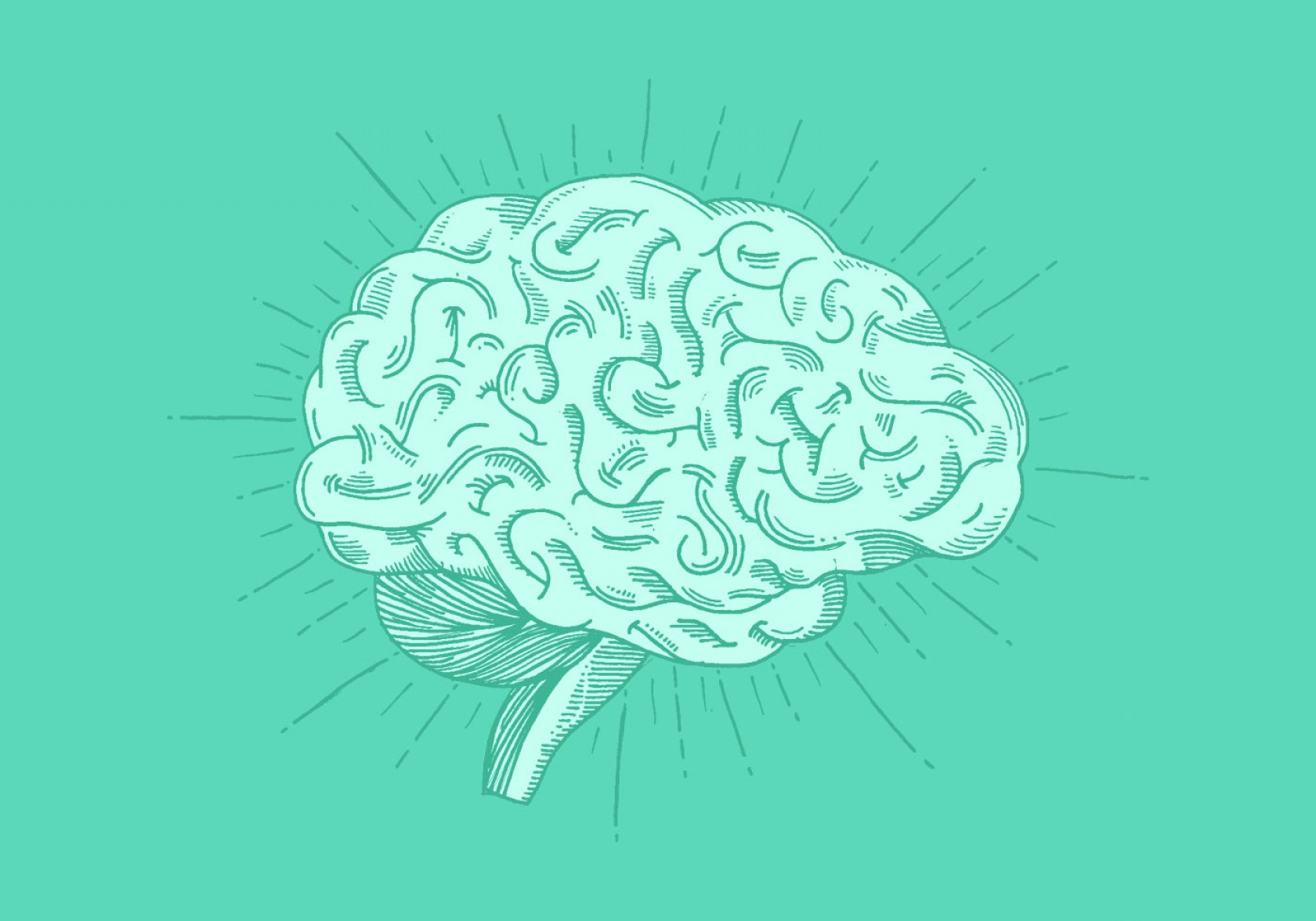 Brain Vector Art: Bright Hand Drawn Brain Vector