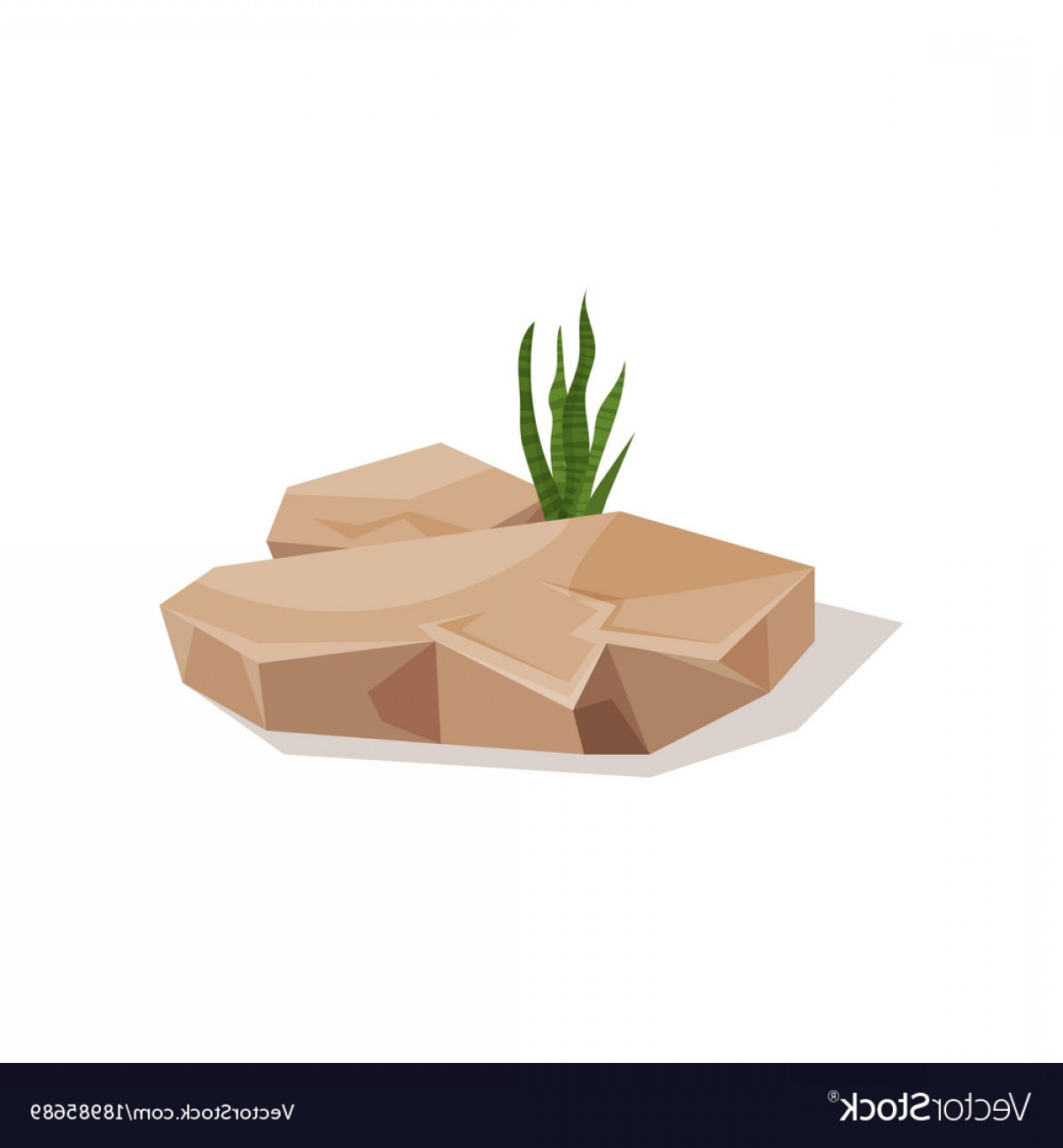 Vector Stone Landscaping: Brown Stone With Sansevieria Plant Landscape Vector