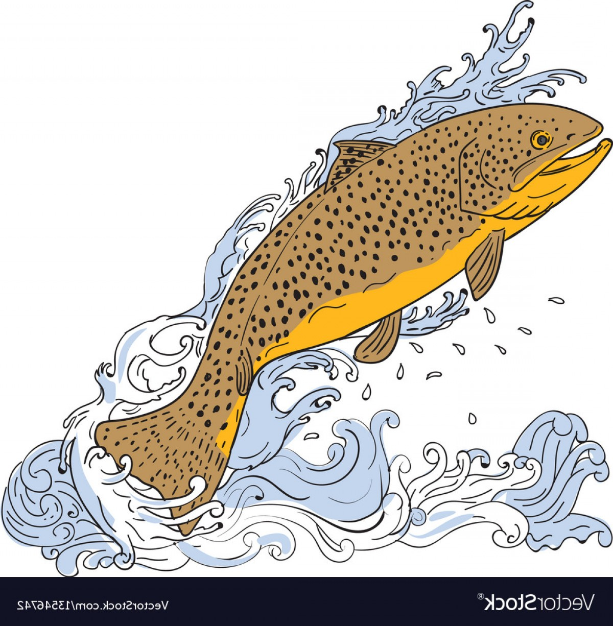 Speckled Trout Vector: Brown Trout Swimming Up Turbulent Water Drawing Vector