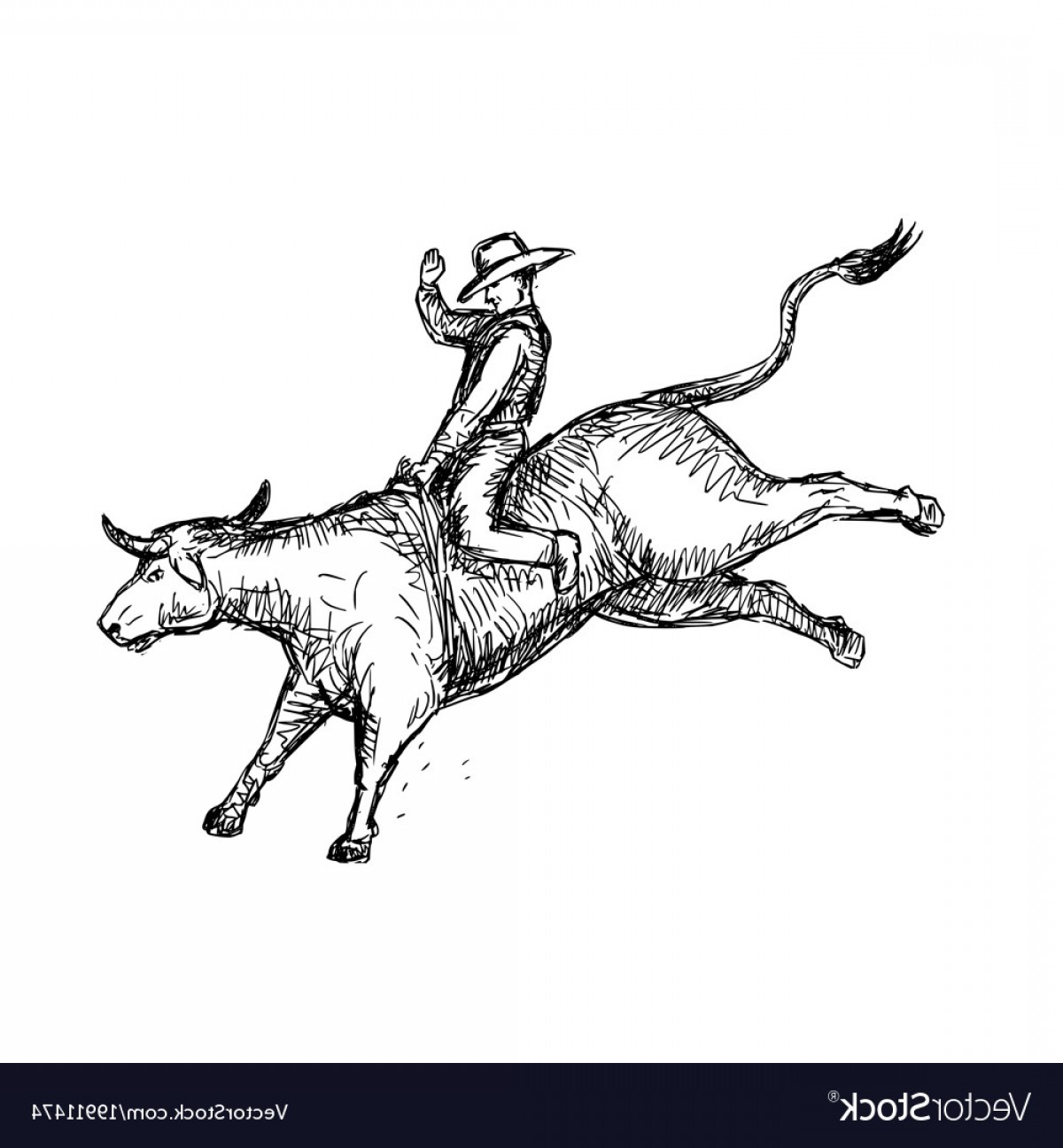 Cowboys Line Drawings Vector: Bull Riding Rodeo Cowboy Drawing Vector