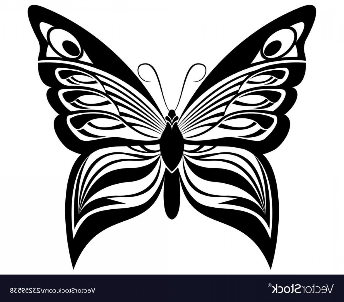 Vector Butterfly Clip Art: Butterfly Black White Silhouette Design Vector