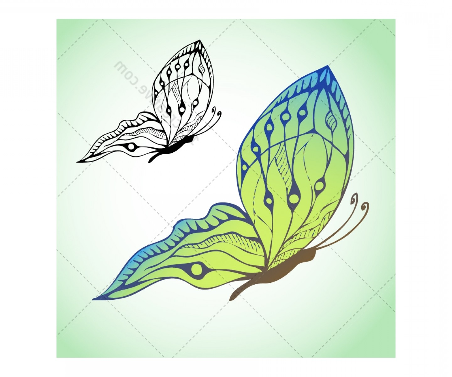 Butterly Vector: Butterfly Hand Drawn Vector Pack