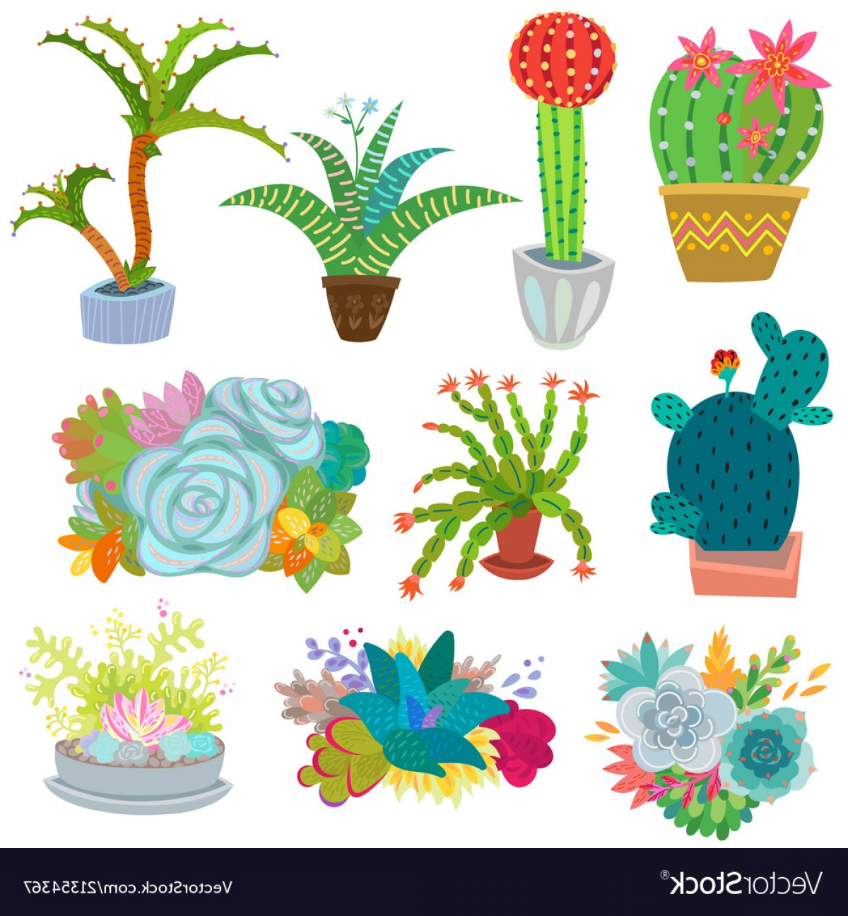 Potted Cactus Plant Vector: Cactus Botanical Cacti Potted Cute Vector