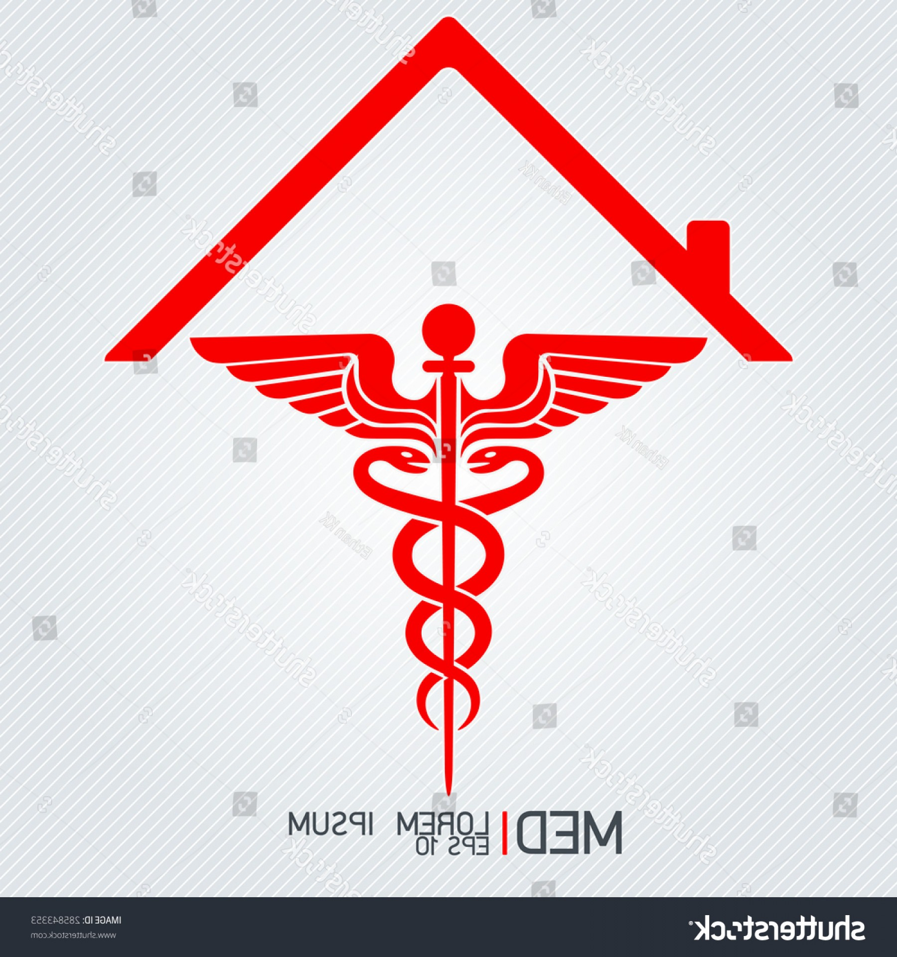 With Red Caduceus Vector: Caduceus Sign Medical Icons Isolated Vector