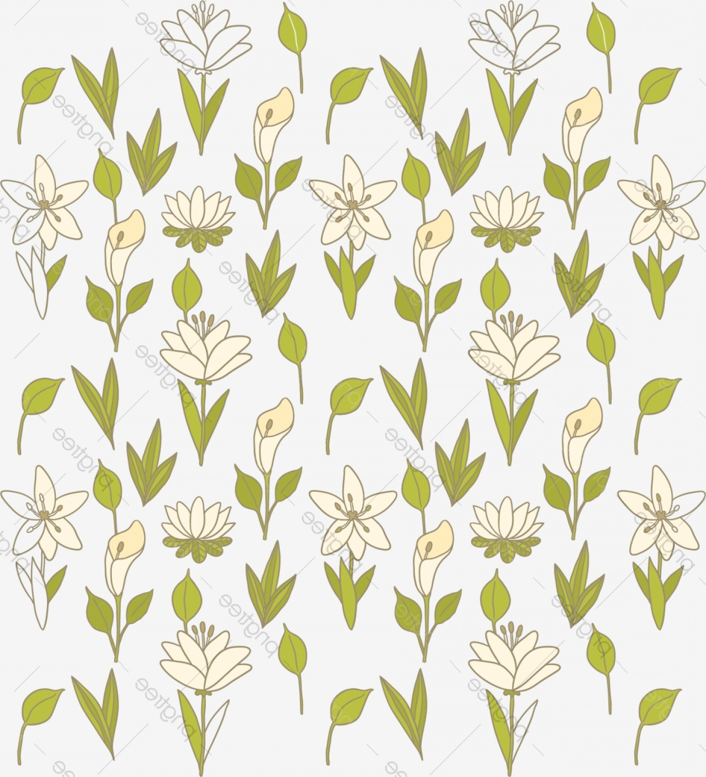 Lily Vector Art: Calla Lily Flowers Floral Background Vector
