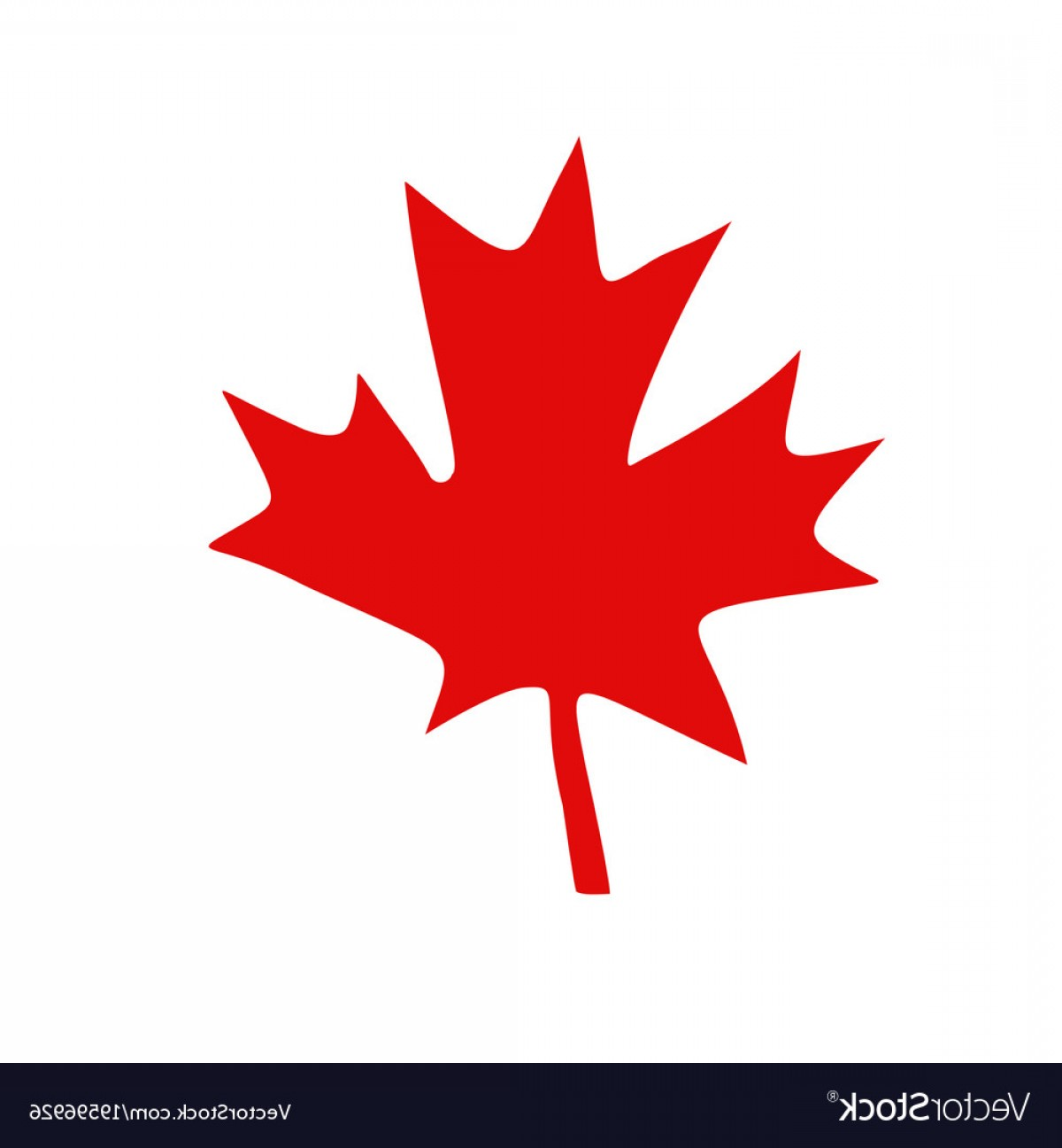 Red Maple Leaf Vector: Canadian Red Maple Leaf Vector