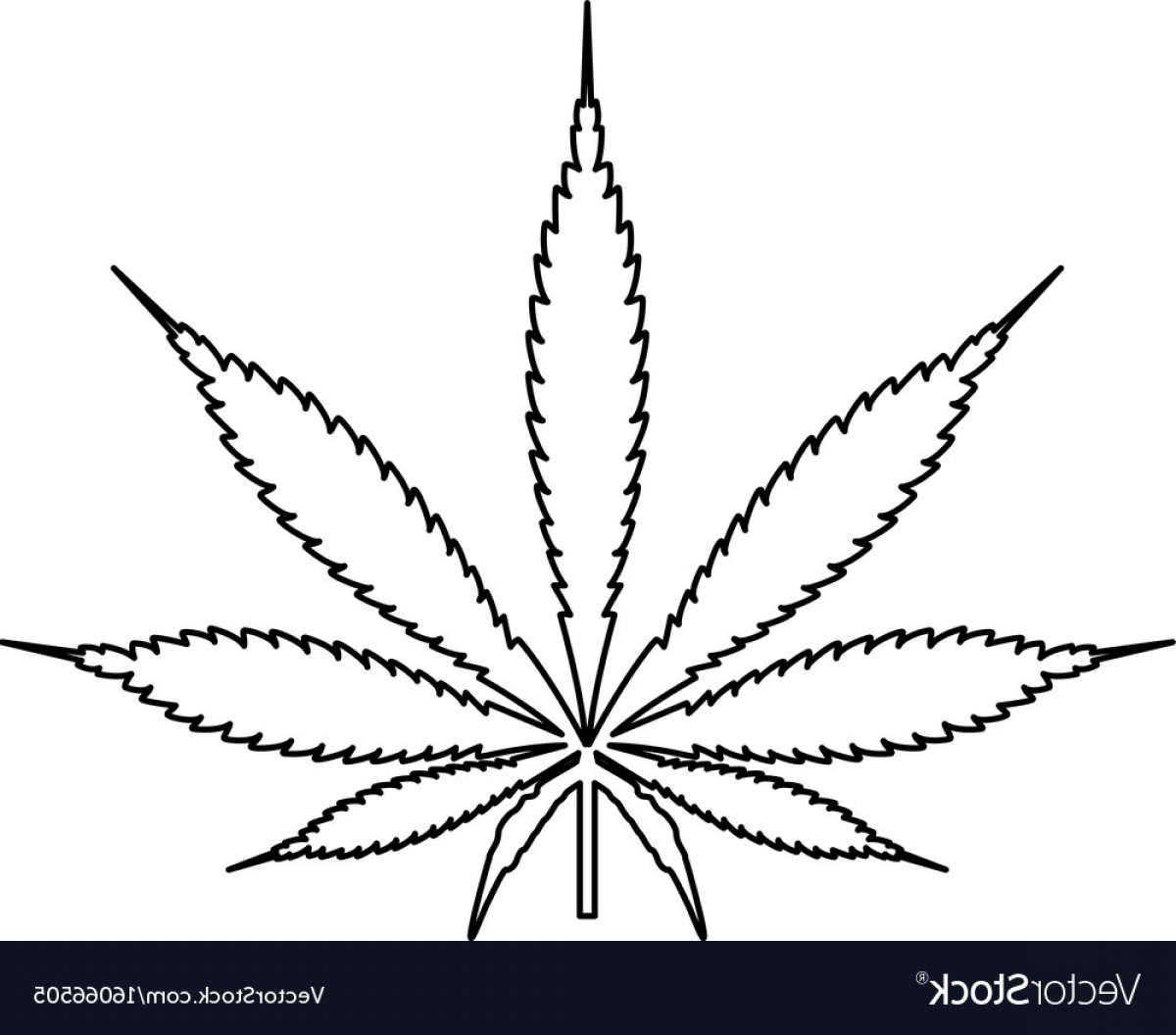 Black And White Vector Image Of Weed Plants: Cannabis Marijuana Leaf Black Color Path Icon Vector