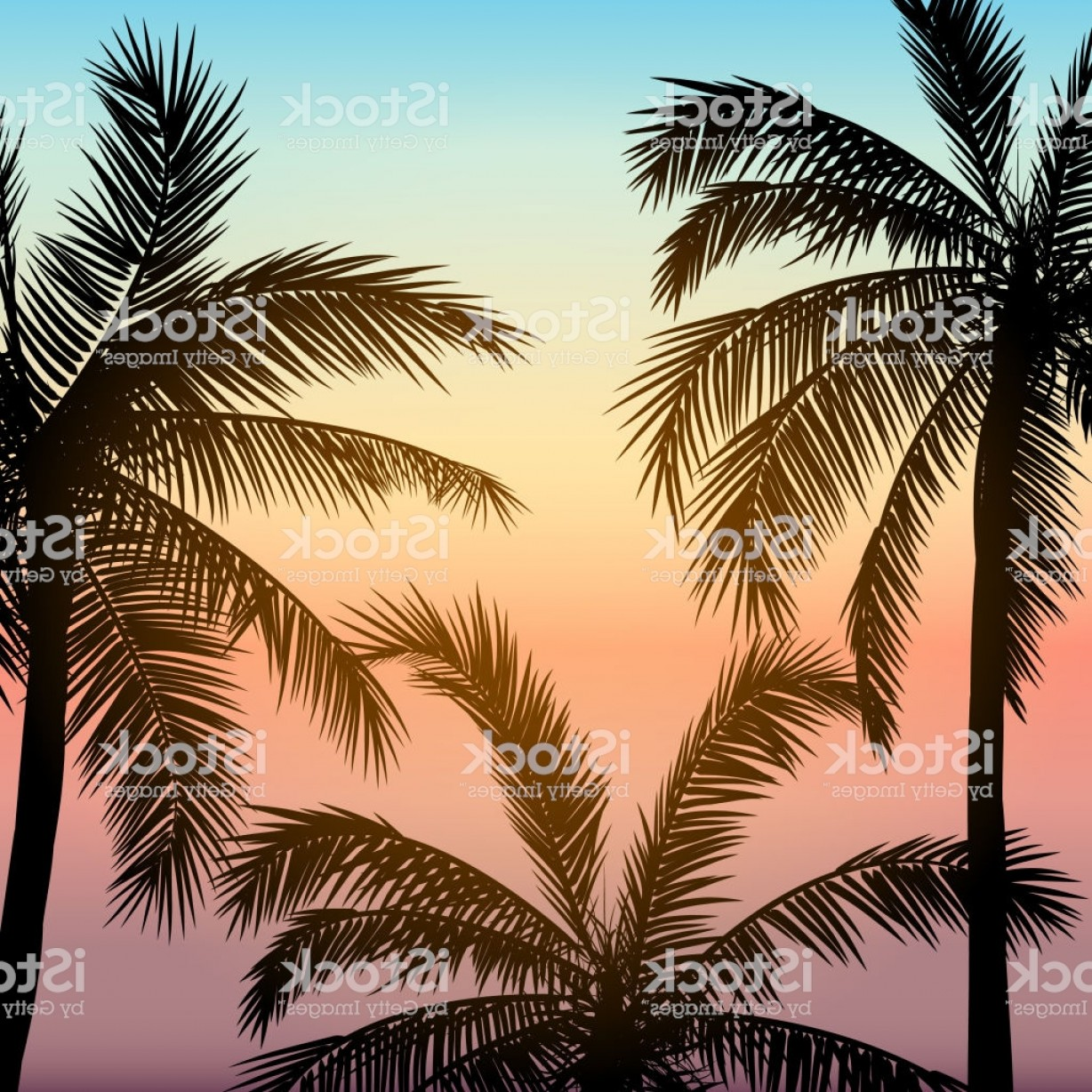 Card With Realistic Palm Trees Silhouette On Tropical Grunge