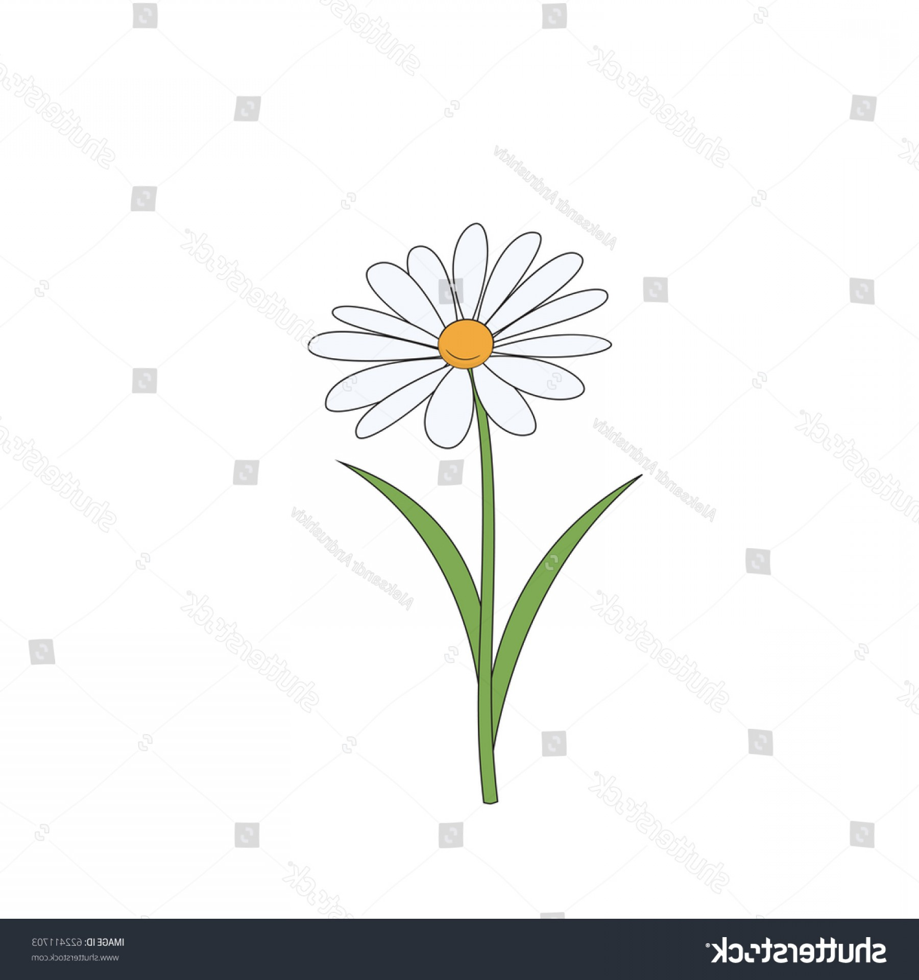 Simple Vector Daisy: Cartoon Daisy Simple Flower On White