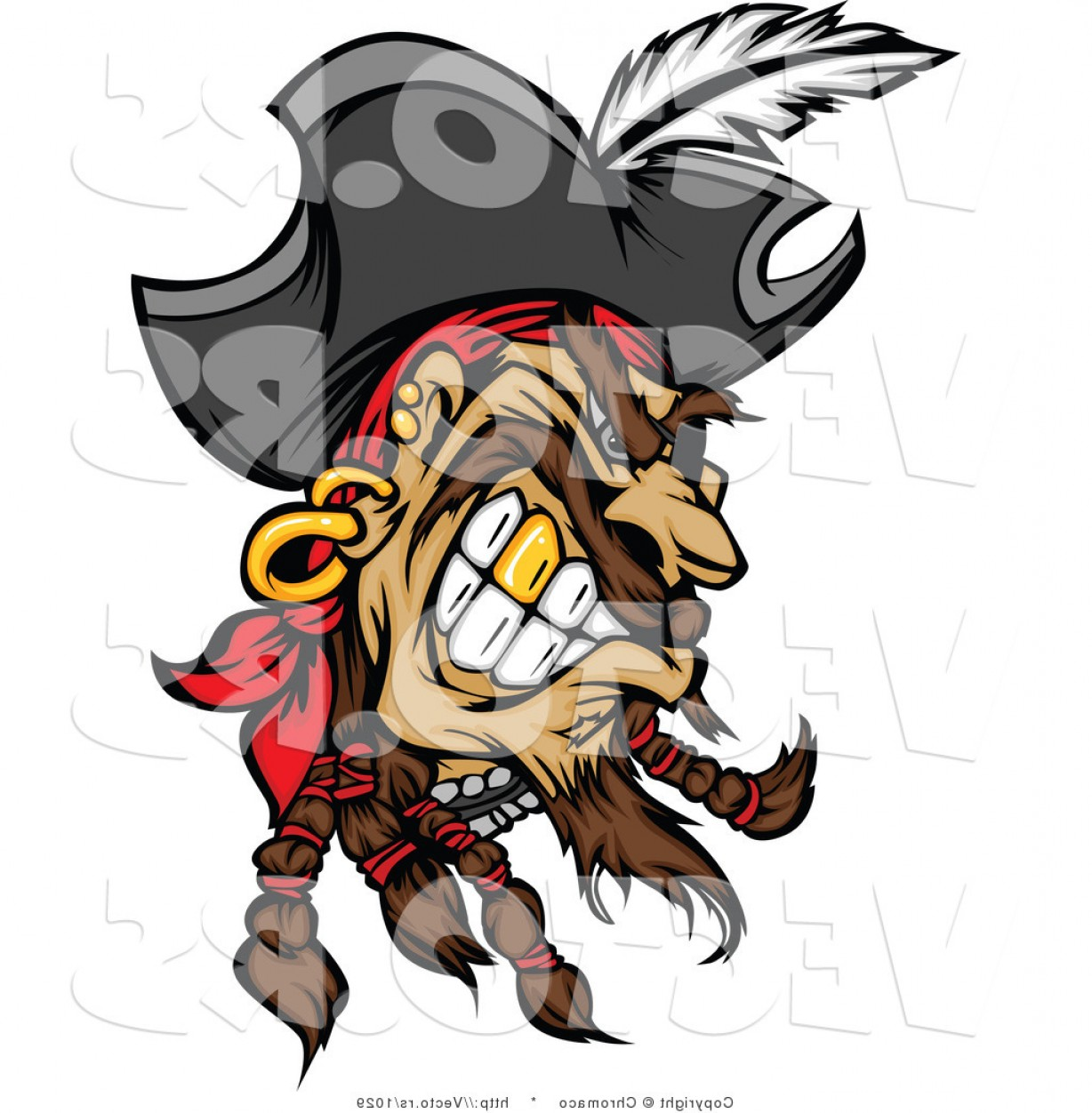 Cartoon Pirate Vector Art: Cartoon Vector Of A Grinning Cartoon Pirate With Gold Tooth By Chromaco