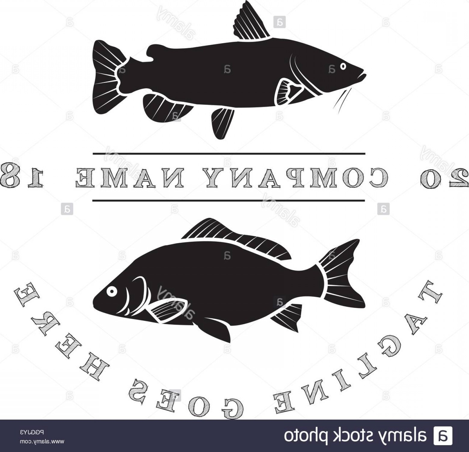 Catfish Vector Logo: Catfish And Carp Vector Logo Image Image