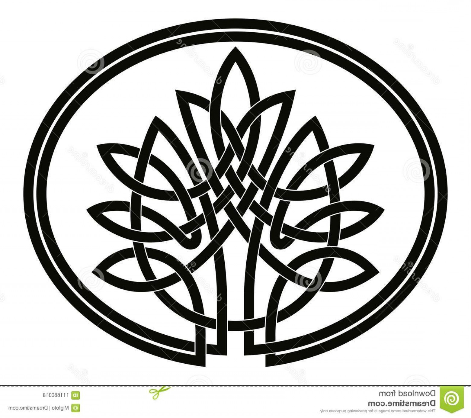 Celtic Tree Vector: Celtic Tree Life Vector National Drawing Isolated White Background Image