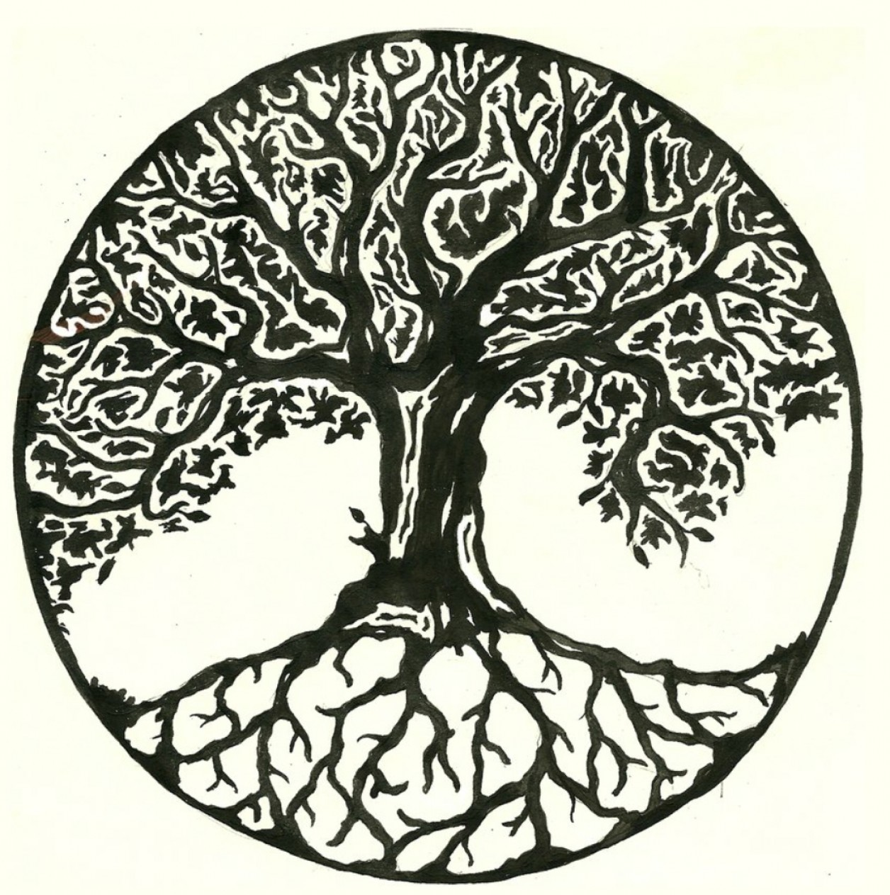 Celtic Tree Vector: Celtic Tree Of Life Drawing Celtic Tree Of Life Tattoo Pinterest Circles An And Trees