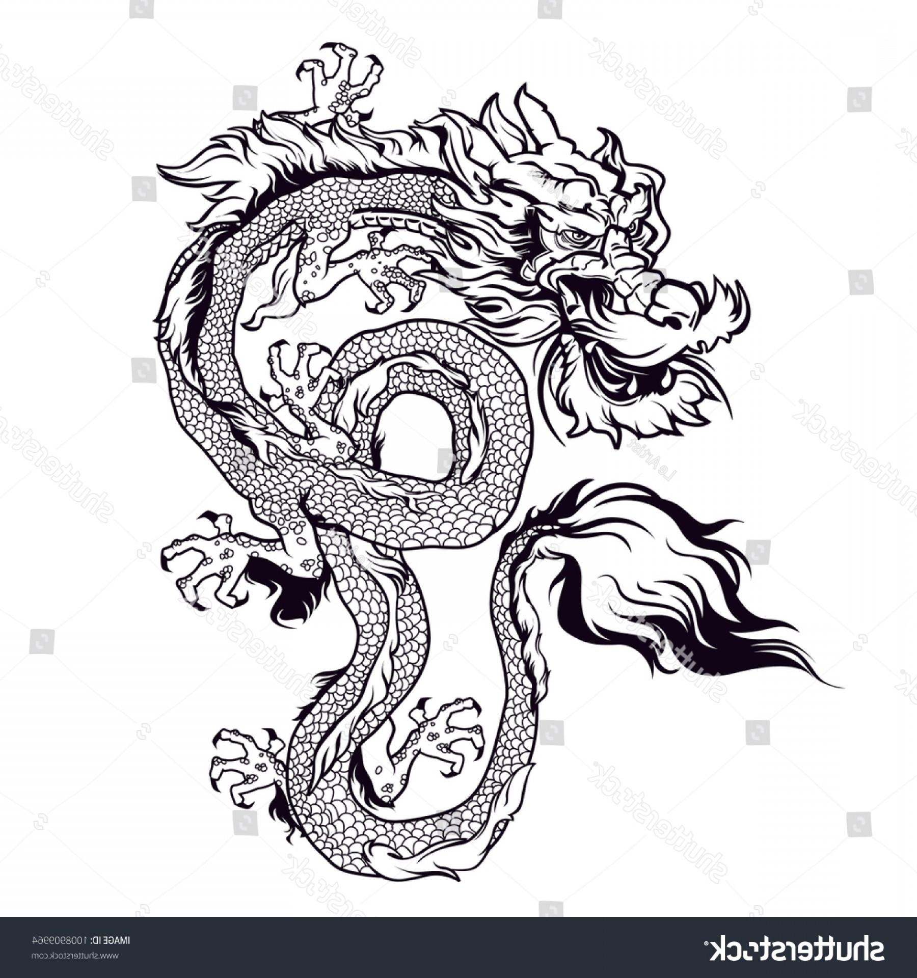 Oriental Dragon Vector: Chinese Dragon Vector Designtraditional Illustration
