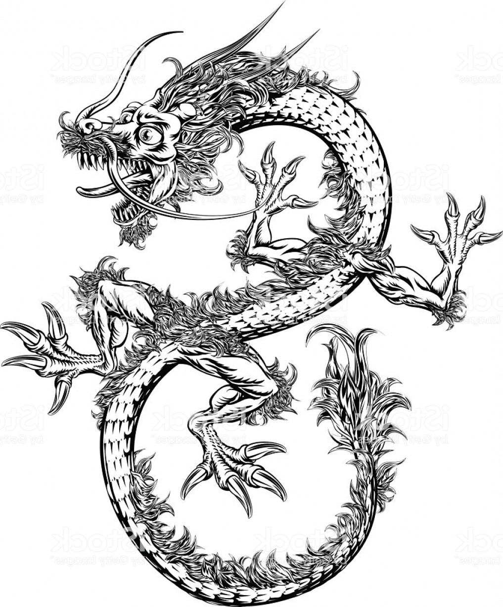 Oriental Dragon Vector: Chinese Or Japanese Oriental Dragon Gm