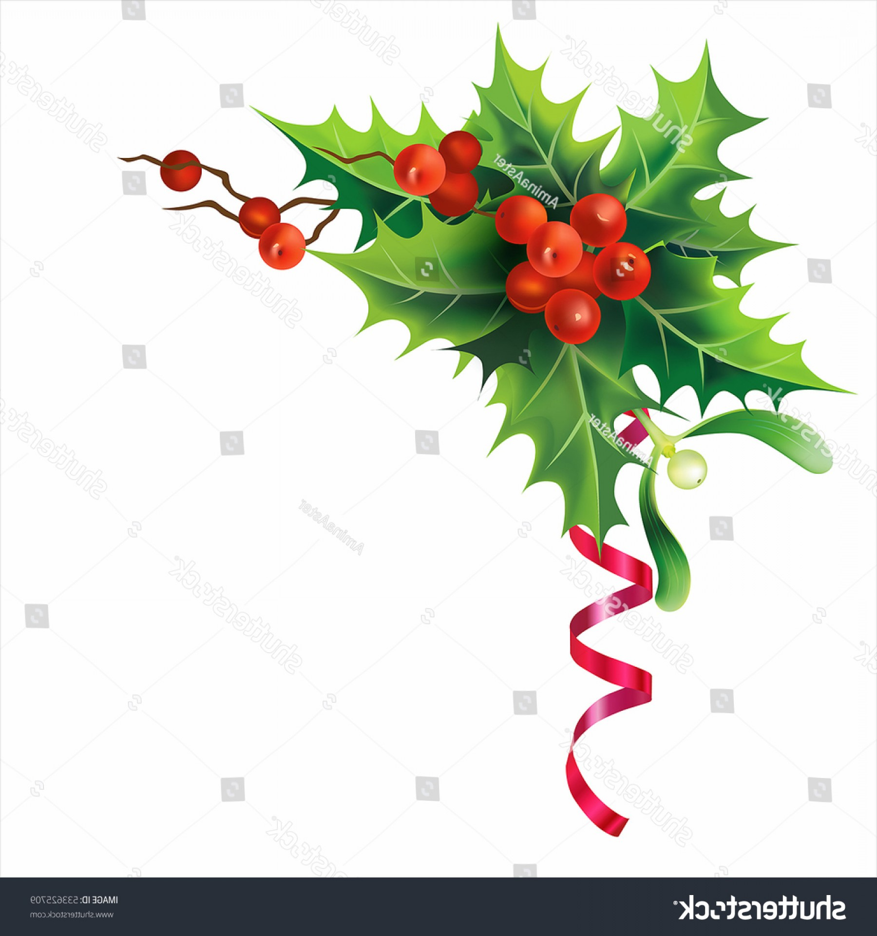 Christmas Holly Border Vector: Christmas Holly Border Isolated On White