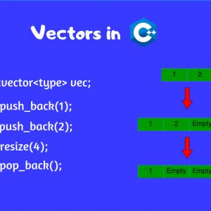 STL Vector Iterator: Chapter Vectors Lists And Sequences