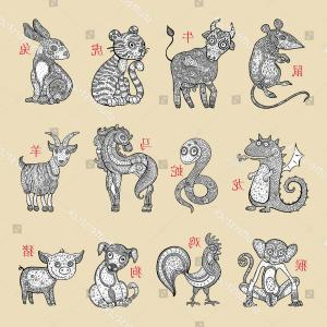 Chinese Zodiac Signs Vector: Chinese Zodiac Signs Hand Drawn Illustration