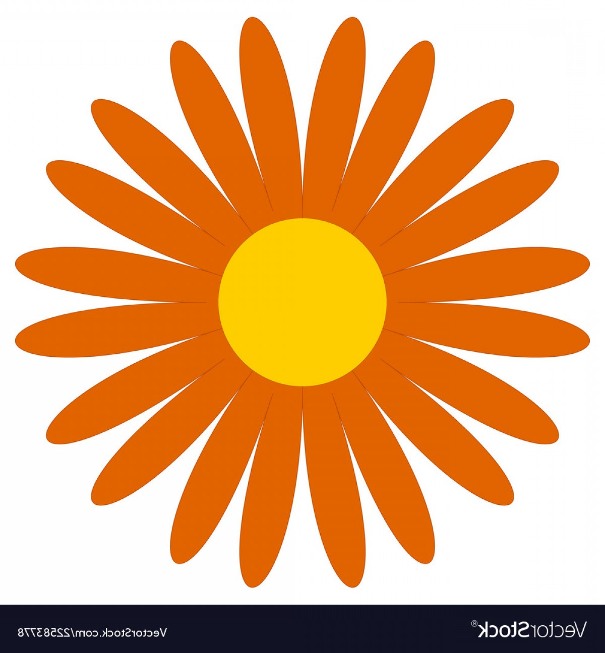 Simple Vector Daisy: Classic Flower Clip Art Simple Orange Daisy Vector