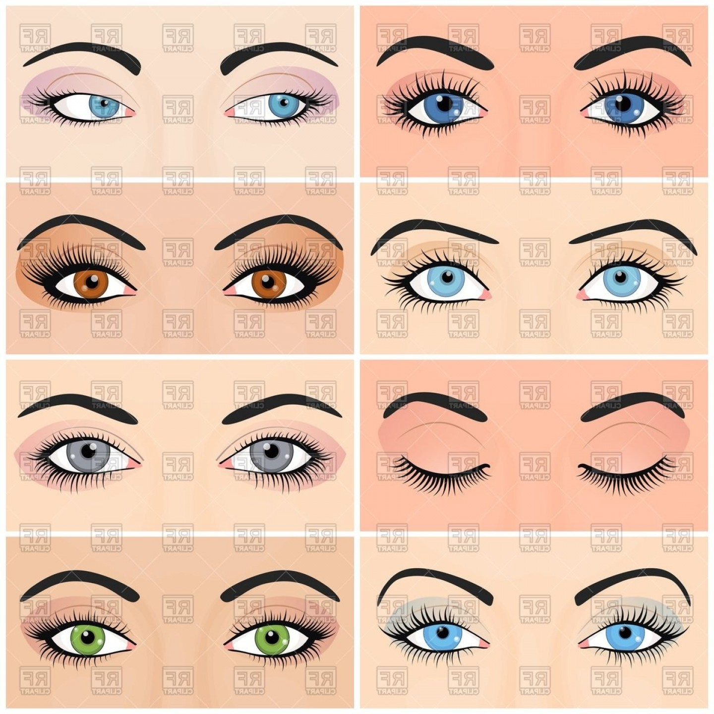 Top Eye Lashes Vector: Close And Open Womens Eyes Vector Clipart