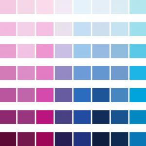 Color CMYK Chart Vector Free: Cmyk Color Chart New Pantone Color Bridge Cmyk Pc Color Analysis Pinterest Photograph