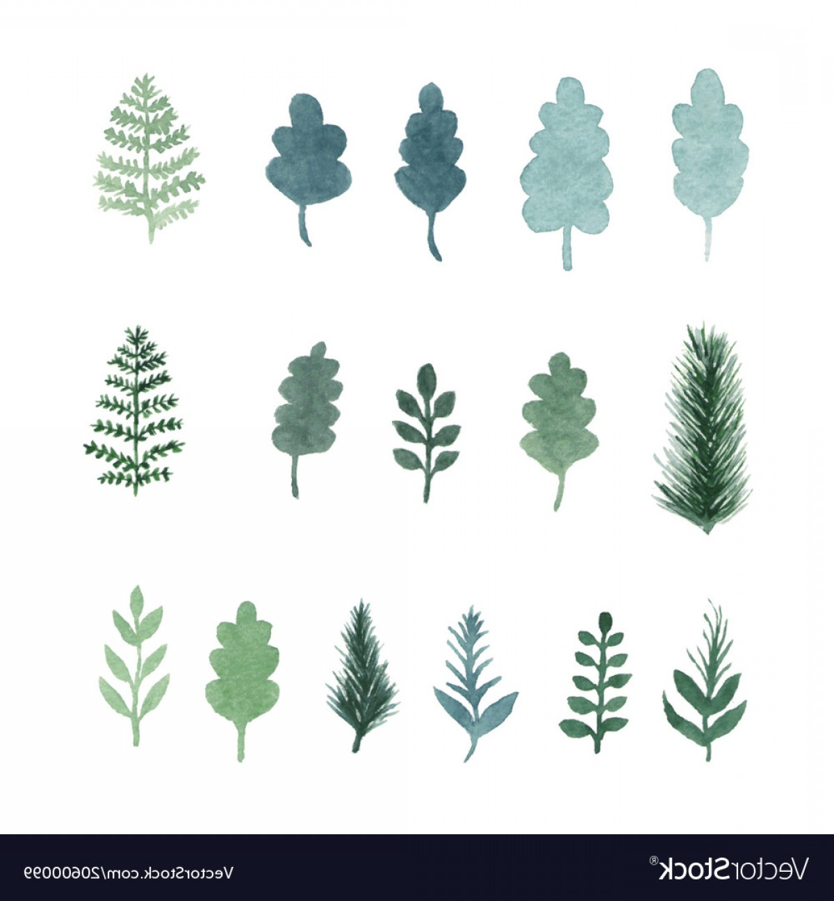 Pine Leaf Vector: Collection Of Watercolor Hand Draw Leaves Vector
