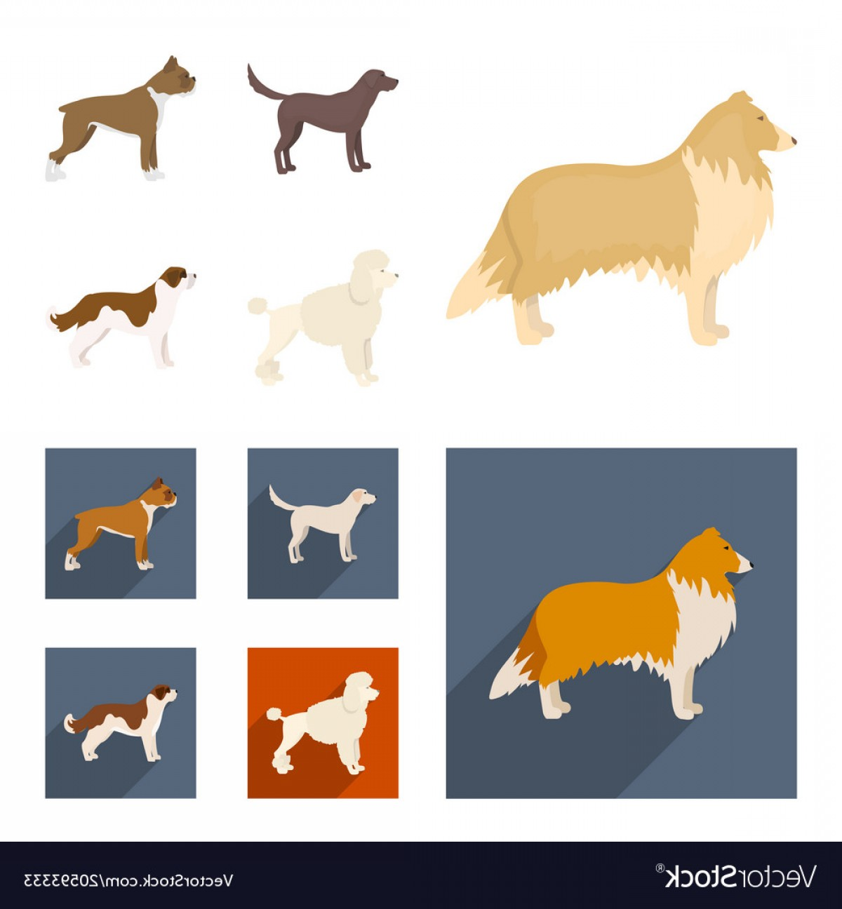 Double Boxer Dog Vector: Collie Labrador Boxer Poodle Dog Breeds Set Vector