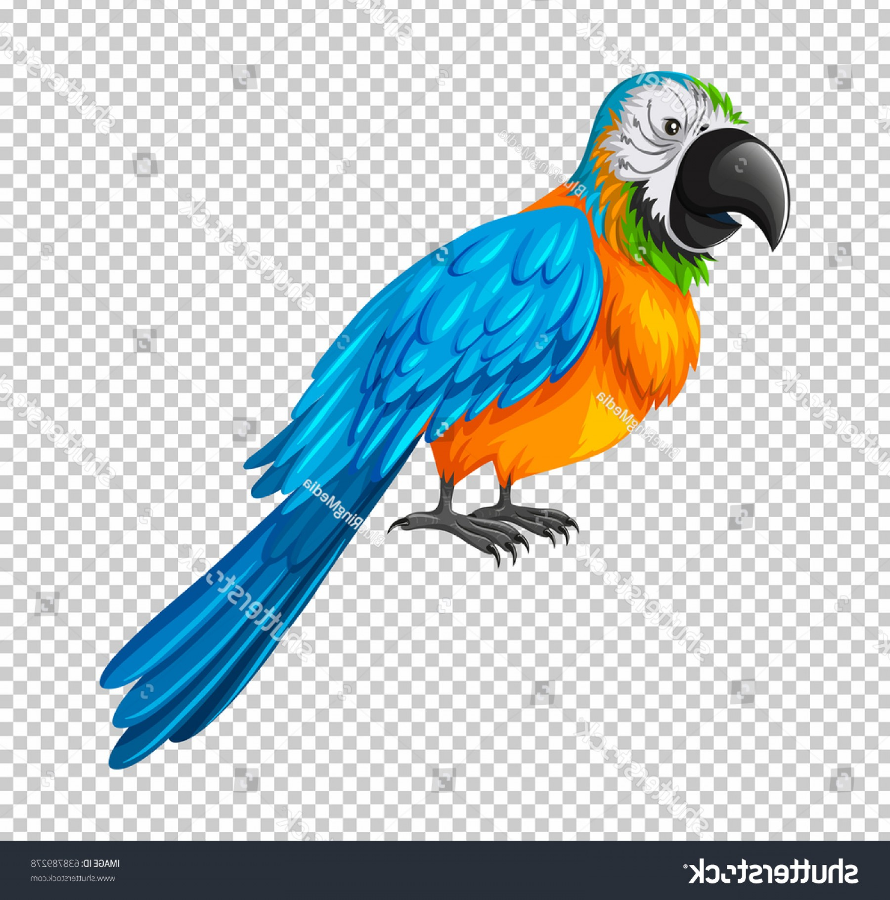Abstract Vector Art Parrot: Colorful Parrot On Transparent Background Illustration