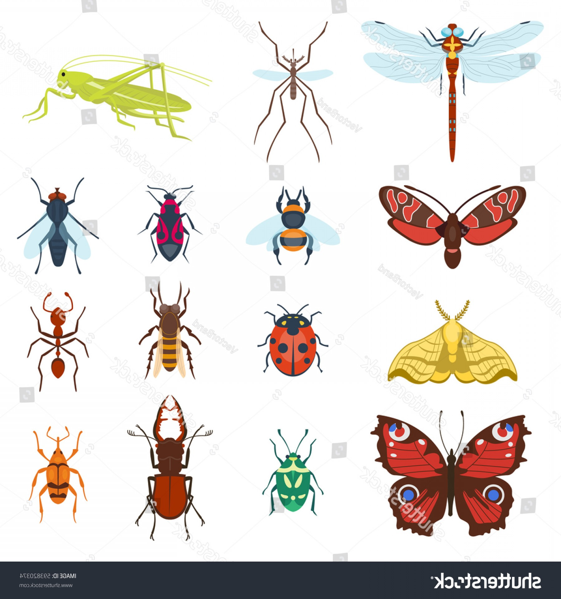 Kawaii Bug Vector: Colorful Top View Insects Icons Isolated