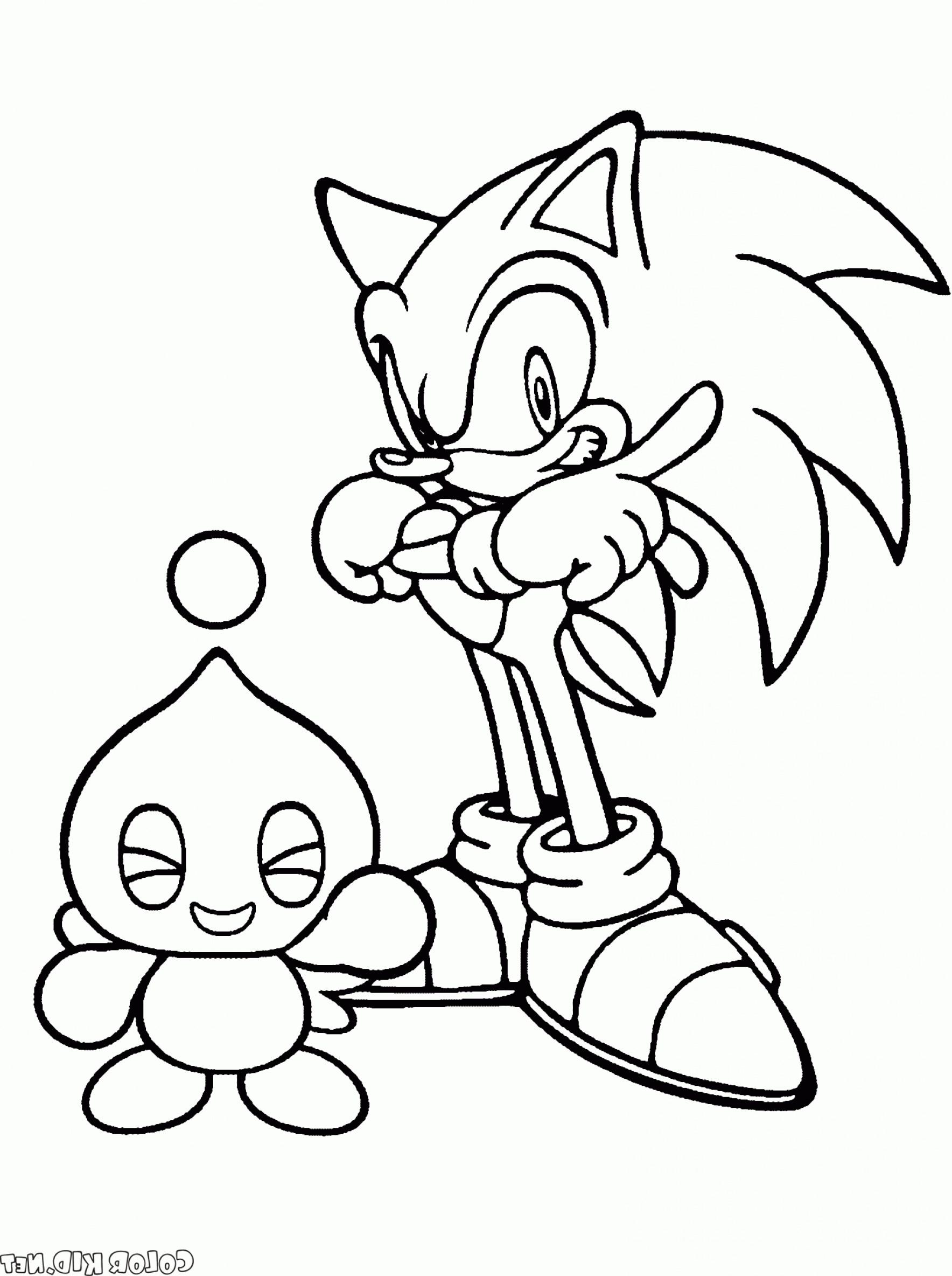 Vector Sonic X Drawings: Coloring Page Sonic X And Cheese Chao