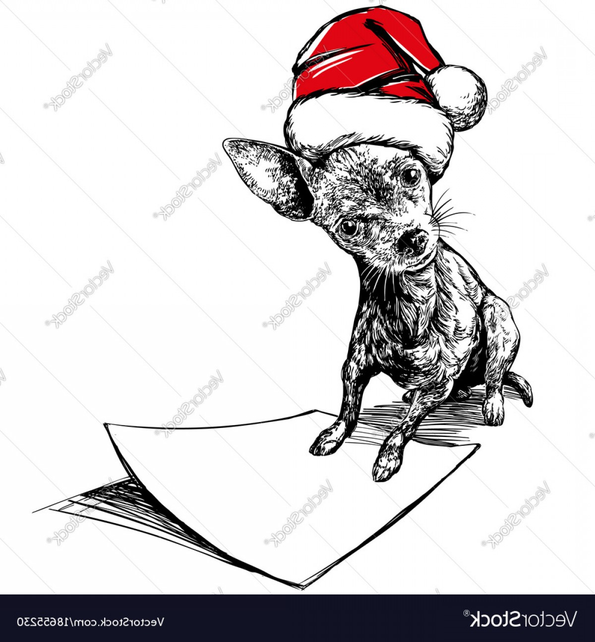 Stocking Hat Vector: Comfortable Dog In Santa Stocking Hat Santa Claus Christmas Vector