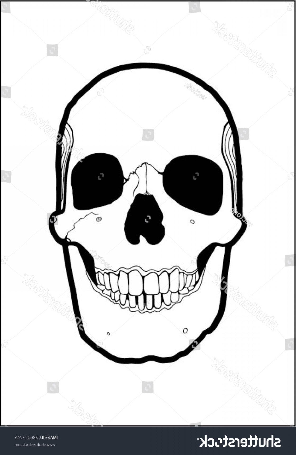 Cool Skull Vector: Cool Skull Illustration Vector Warning