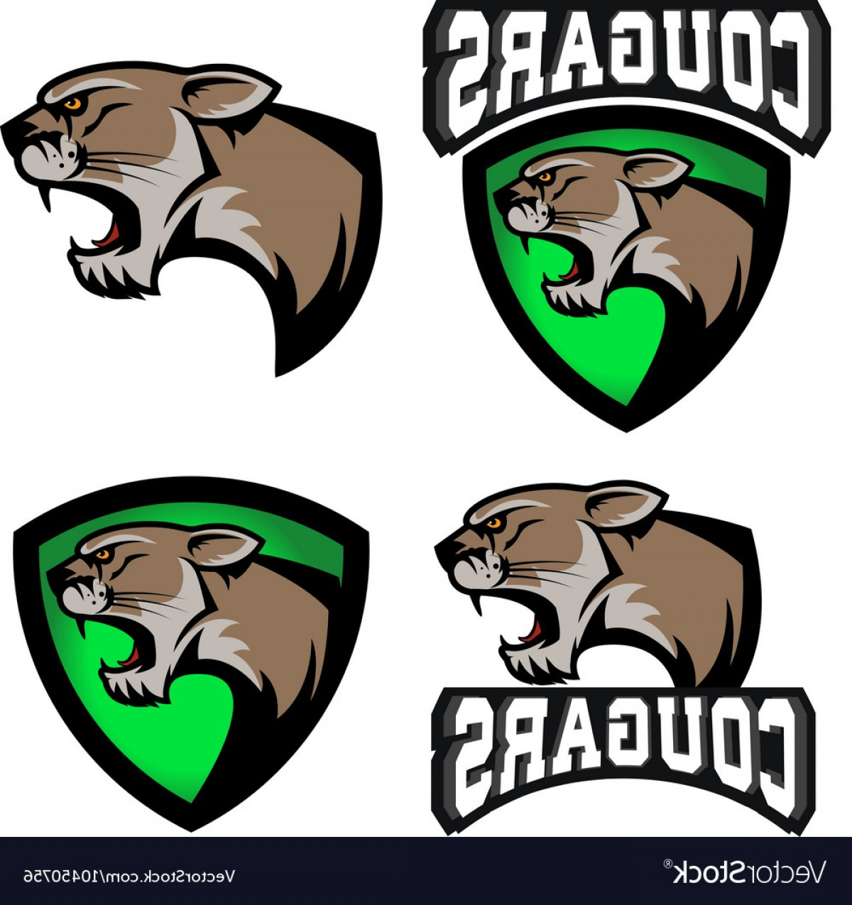 Cougar Logo Vector: Cougars Sport Team Logo Template Vector