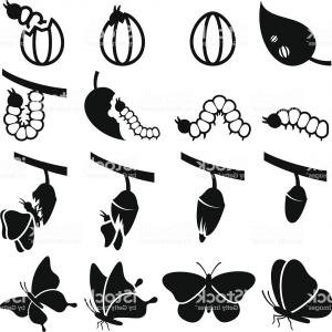 Vector Silhouette Butterfly Eating: Animals Butterflies Butterfly Flying Insect Silhouette Wings Svg Free Vector Graphics