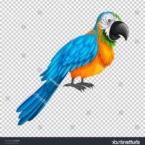 Abstract Vector Art Parrot: Vector Seamless Pattern With Tropical Parrot Birds On Tree Gm