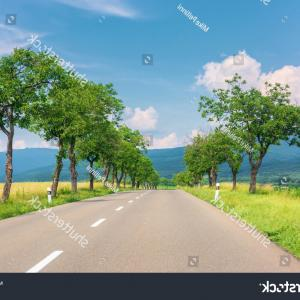 Sunset Roadway Vector Realistic: Countryside Road Mountains Trees Rural Fields