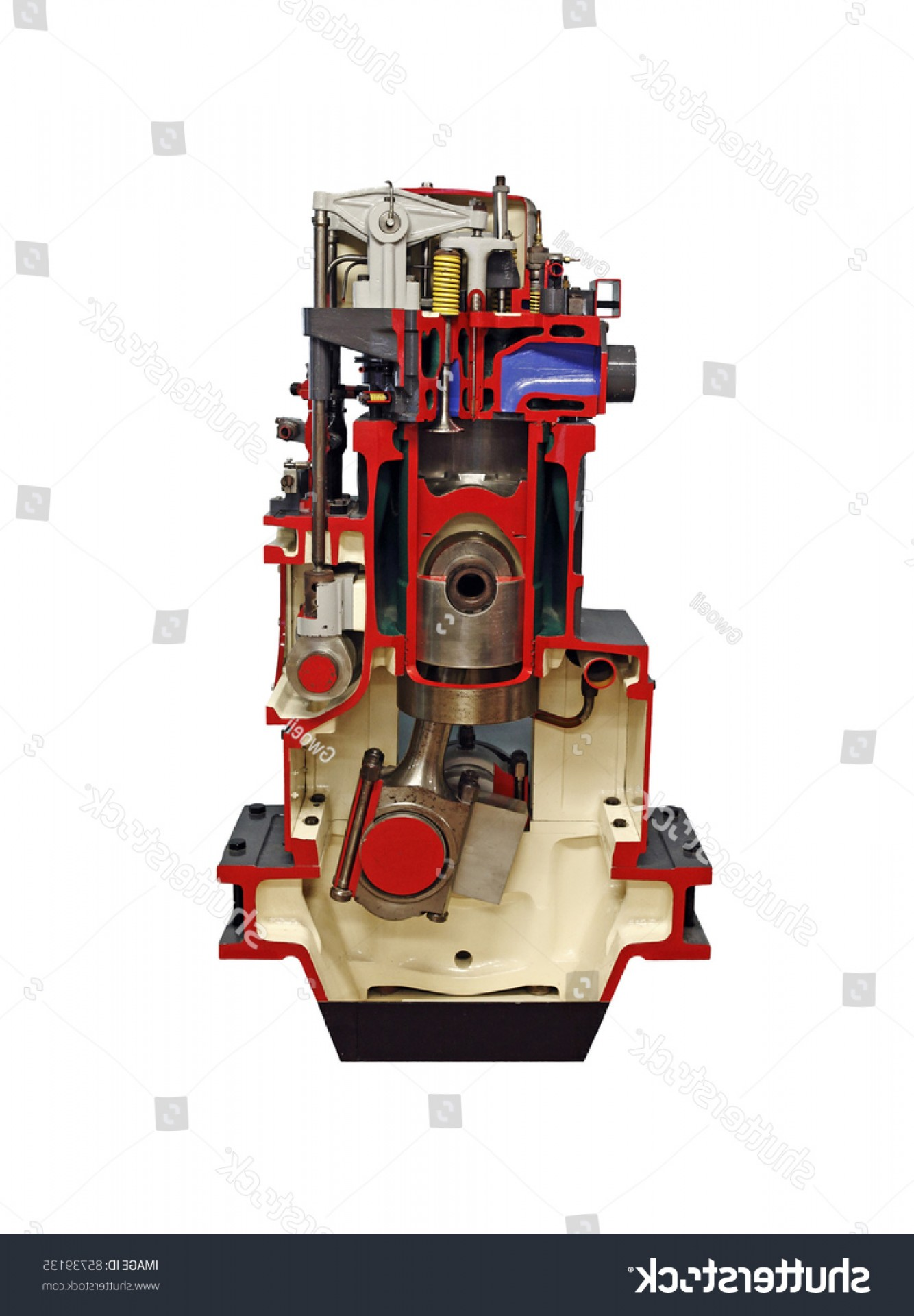 Diesel Engine Block Vector: Cross Section Diesel Engine Showing Internal