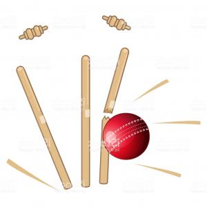 Cricket Bowler Vectors: Cricket Ball Bowled Action Illustration Gm